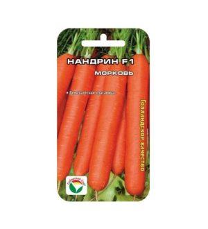 МорковьНандрин