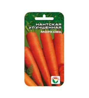 Нантская улучшенная морковь